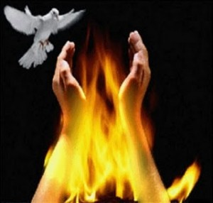 espirito-santo-e-fogo-ddd